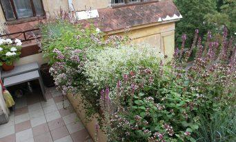 Balkons Rīgā